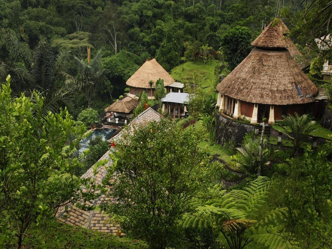 [心身のヒーリング]ウブド自慢の景観に浸りながらヨガ&オーガニック料理の毎朝食付き。癒しの滞在型リゾート・バグース ジャティ(スーペリアシャレー)へご宿泊|ガルーダインドネシア航空・関西発着・エコノミークラス利用|4日間|