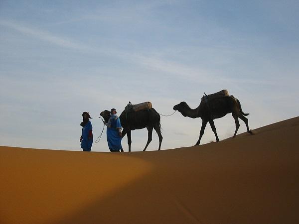 モロッコの美しき大迷宮と砂漠世界へ9日間/電車にも乗車/フェズ&マラケシュ&サハラ砂漠周遊