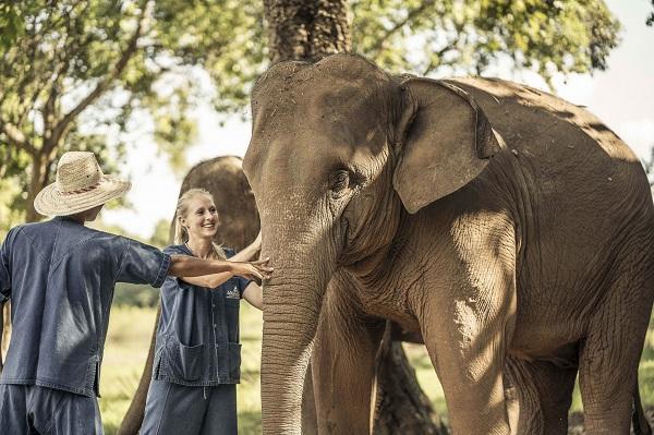 タイを見なおす旅~タイ国境で過ごす濃密アジア大人旅6日間・アナンタラ・ゴールデントライアングル泊/3か国巡り+象と散歩+お料理体験+スパ/全食事付オールインクルーシブ・羽田発着
