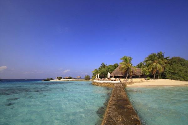 スリランカ+モルディブひとり旅 本格派アーユルヴェーダホテル&超自然派ビーチリゾート8日間/カルナカララとマクヌドゥ泊/トリートメントとオールインクルーシブリゾート全食事付